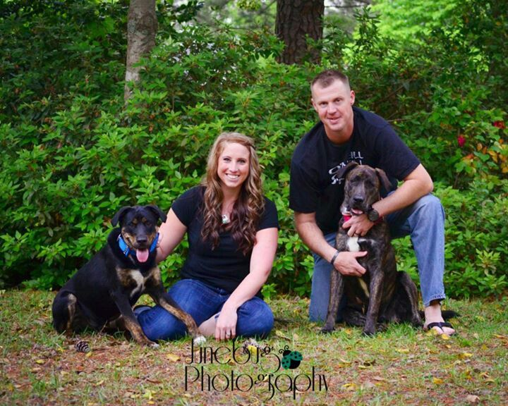 Family With Dogs Pets Photography Junebug