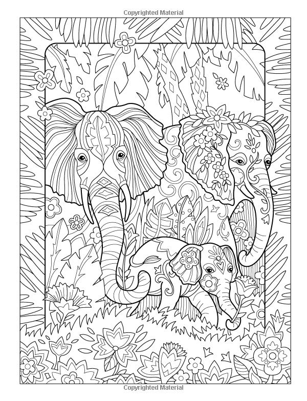 Elegant Elephants Day Night Coloring Book Amazoncouk Marjorie Sarnat