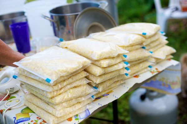 Freezer corn - preserving corn-on-the-cob.