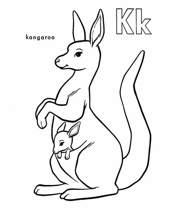 Pin On Kangaroo Coloring Pages