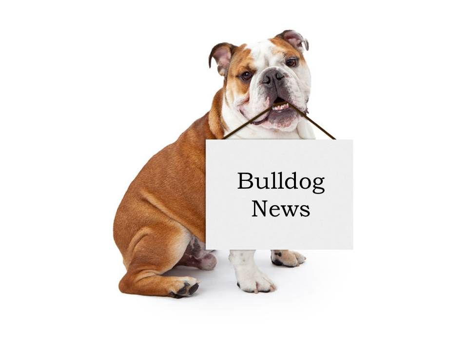 Image result for images of bulldog in cap and gown | Go Get it 2018 ...