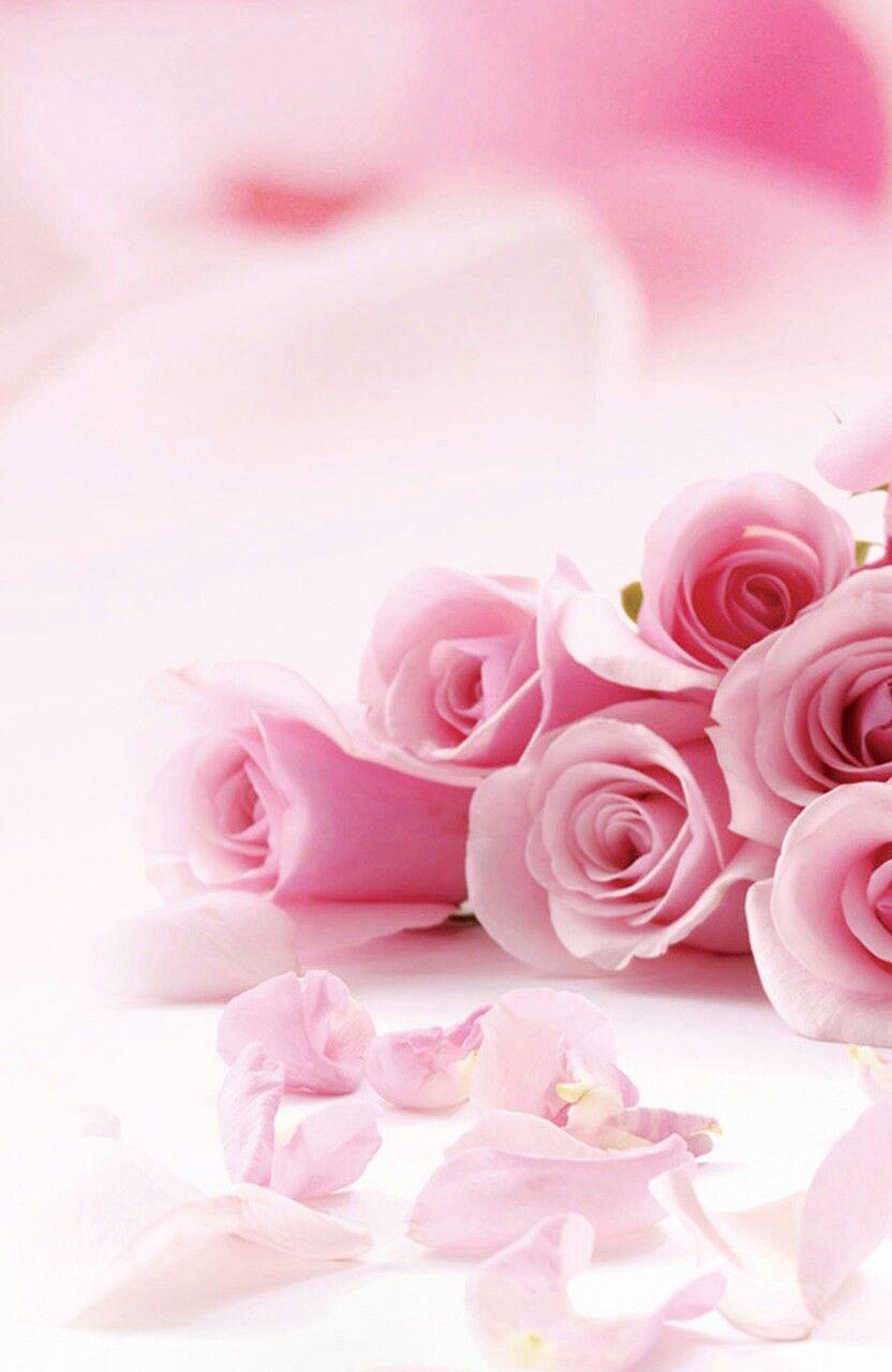 Пин от пользователя Наталия Непомнищих на доске Flowers ...