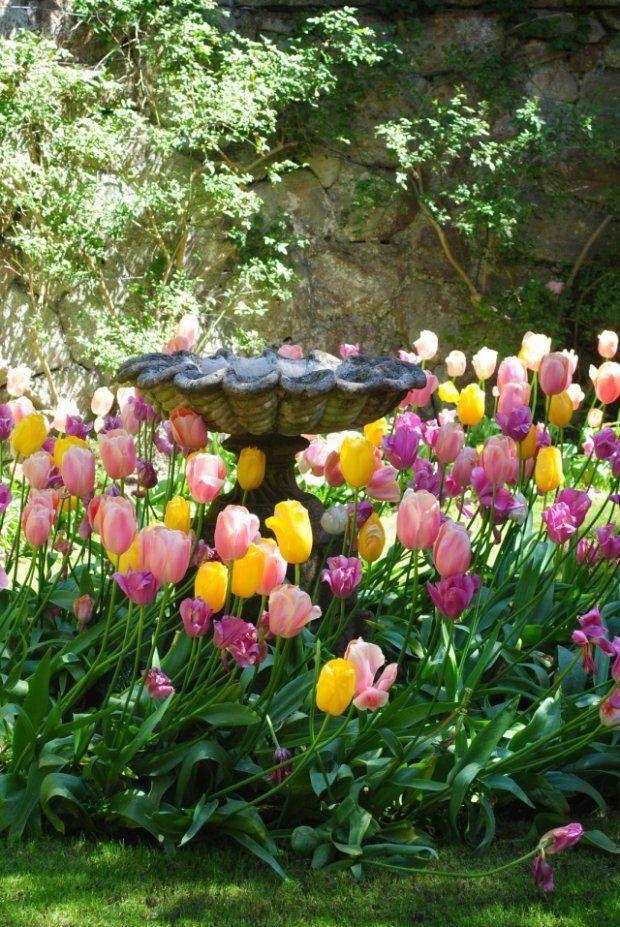 0b7a3cd407d5d1c0ce8af4bb8751f729 - Spring Gardens Detox Spring Hill Fl