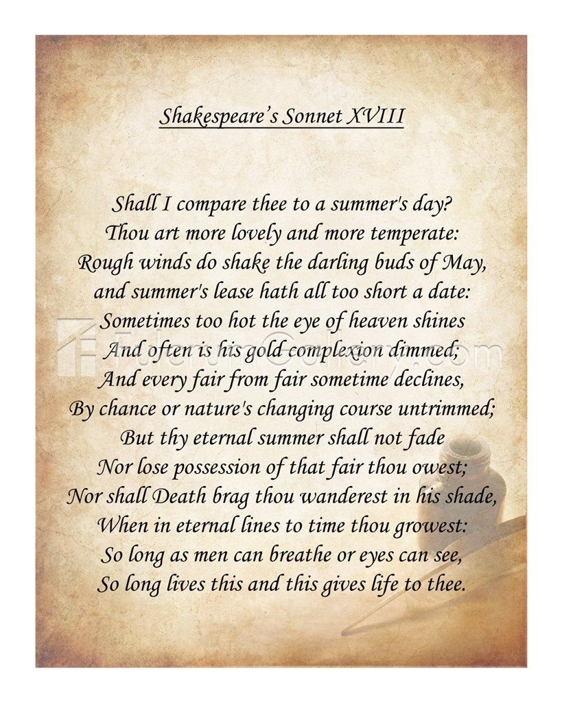 Image Result For Sonnet Xviii Shakespeare Shakespeare Sonnets