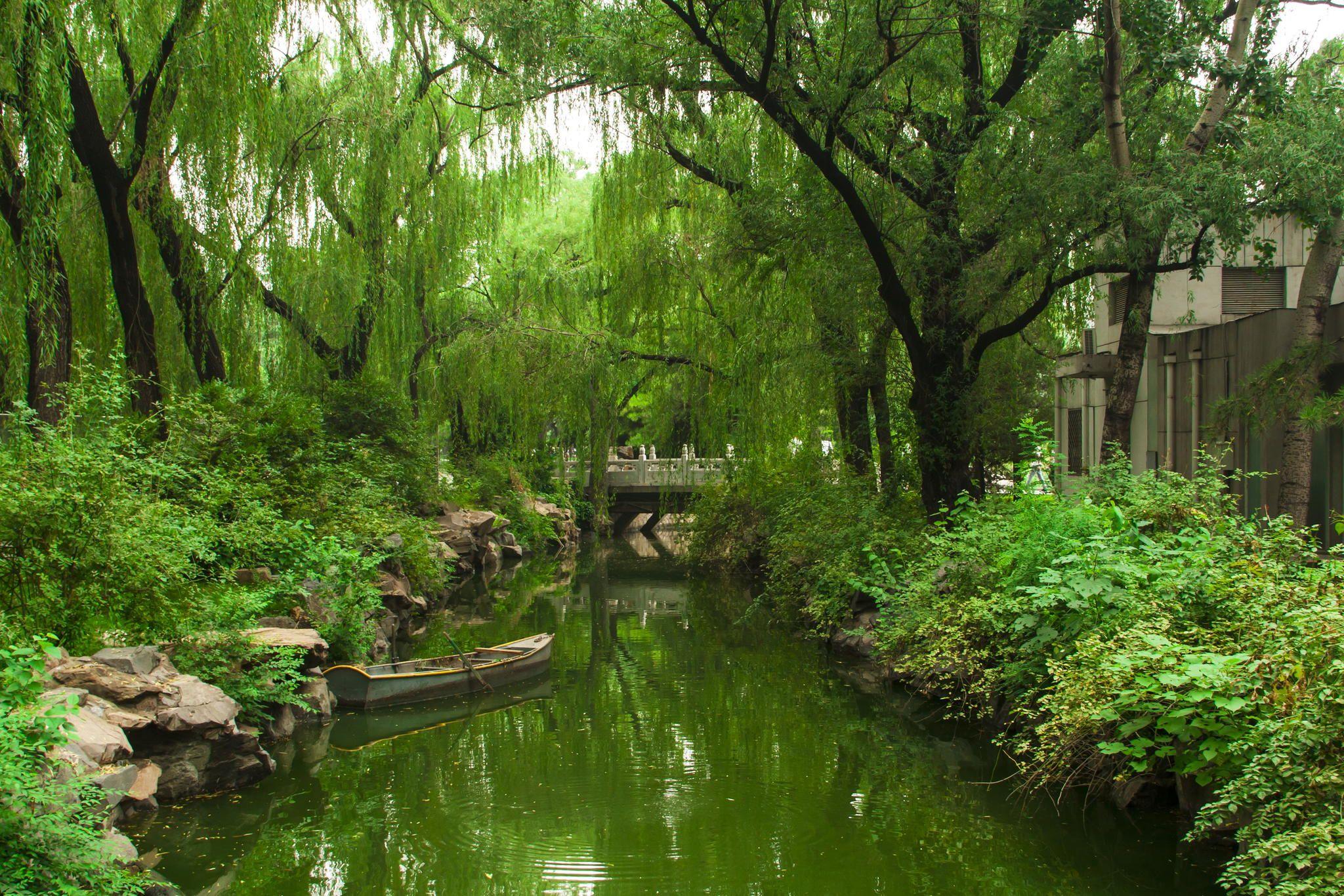 Inside Beijing Zoo. Beijing China park garden green