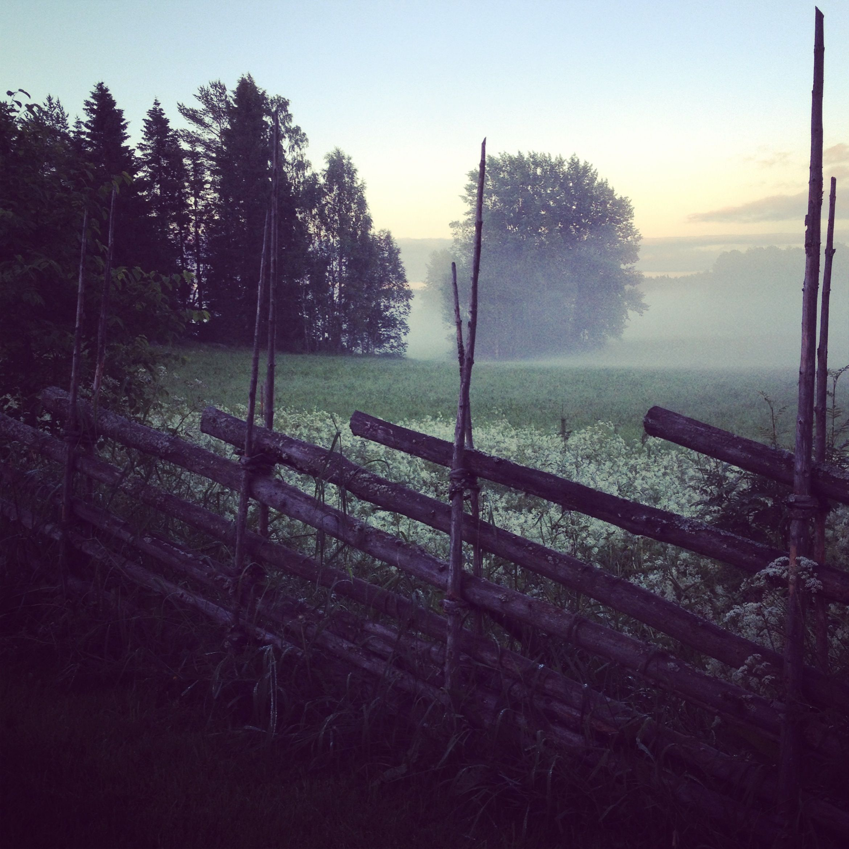 A Swedish Summer Night. I Feel The Dewey Grass And Sense