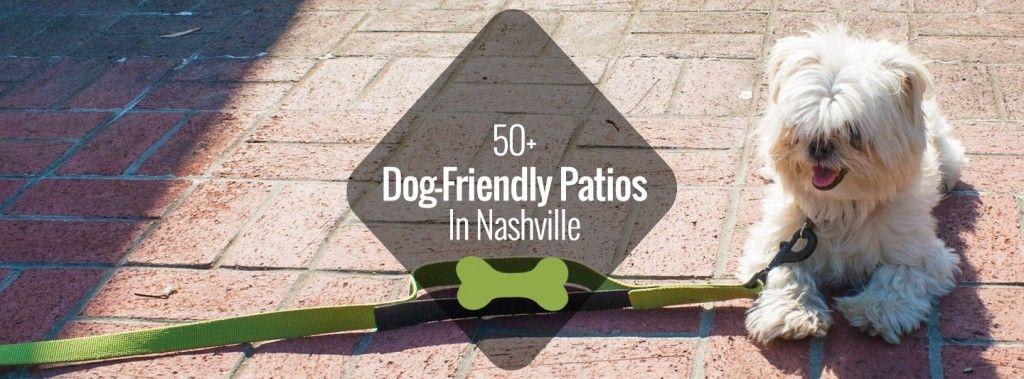 50 dogfriendly patios in nashville nashville guru