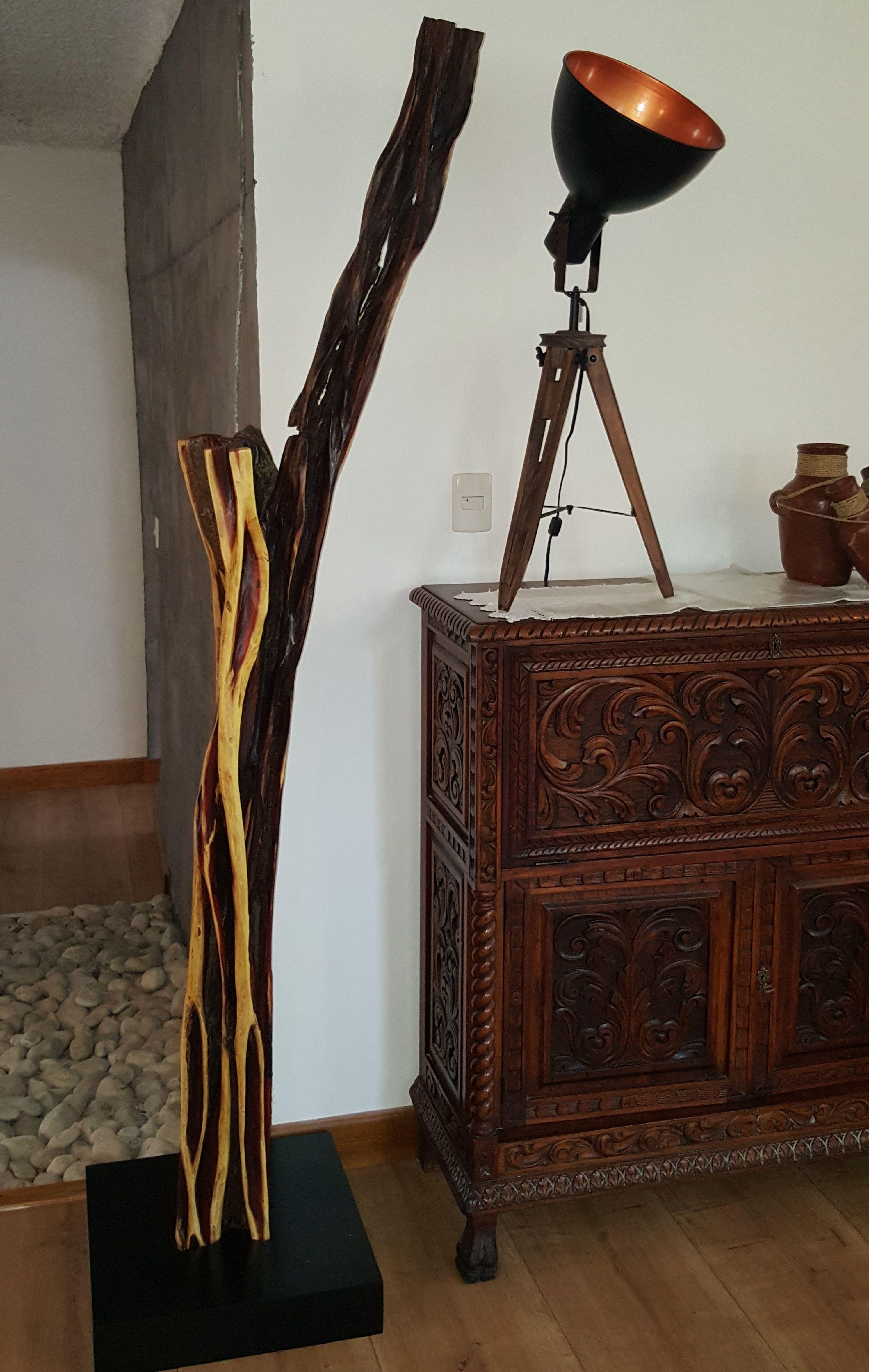 Decoraci N Base Con Rbol De Brasil De La Sierra De Jalisco  # Jalisco Muebles