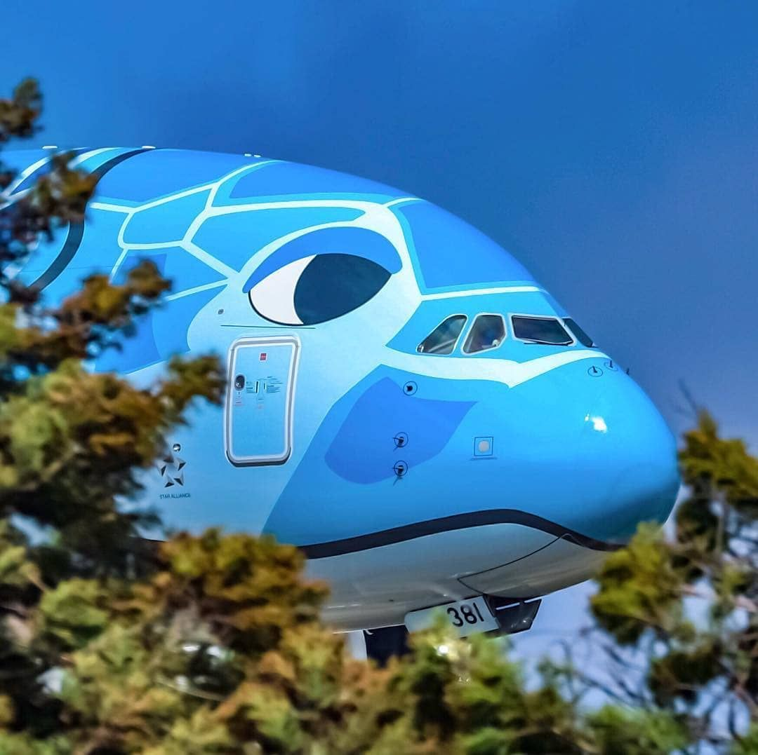 Planeslovers1 9k On Instagram First Picture Of The Ana A380 It S Just Peaking Over The Bushes Isn T It A Beautiful Aircr Luftfahrt Flugzeug Bilder
