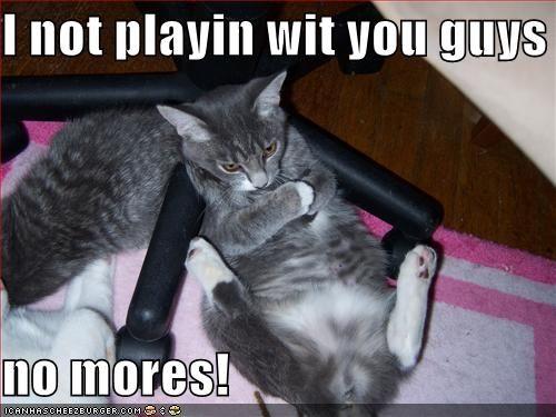 I love a cat with attitude!