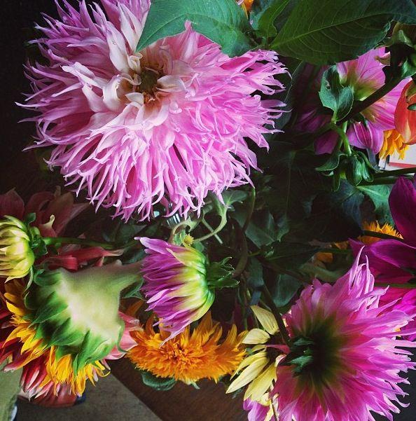 Fall flowers from Bon Appetit magazine.