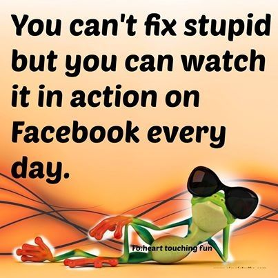 Stupid Facebook Quotes Quote Facebook Funny Quotes Humor Stupid Fan