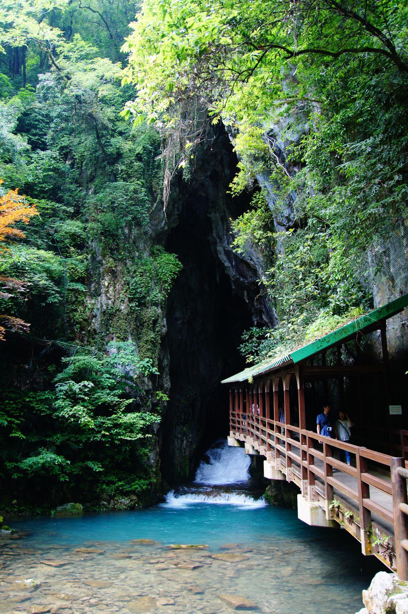 山口県の本当に美しい景勝地おす...