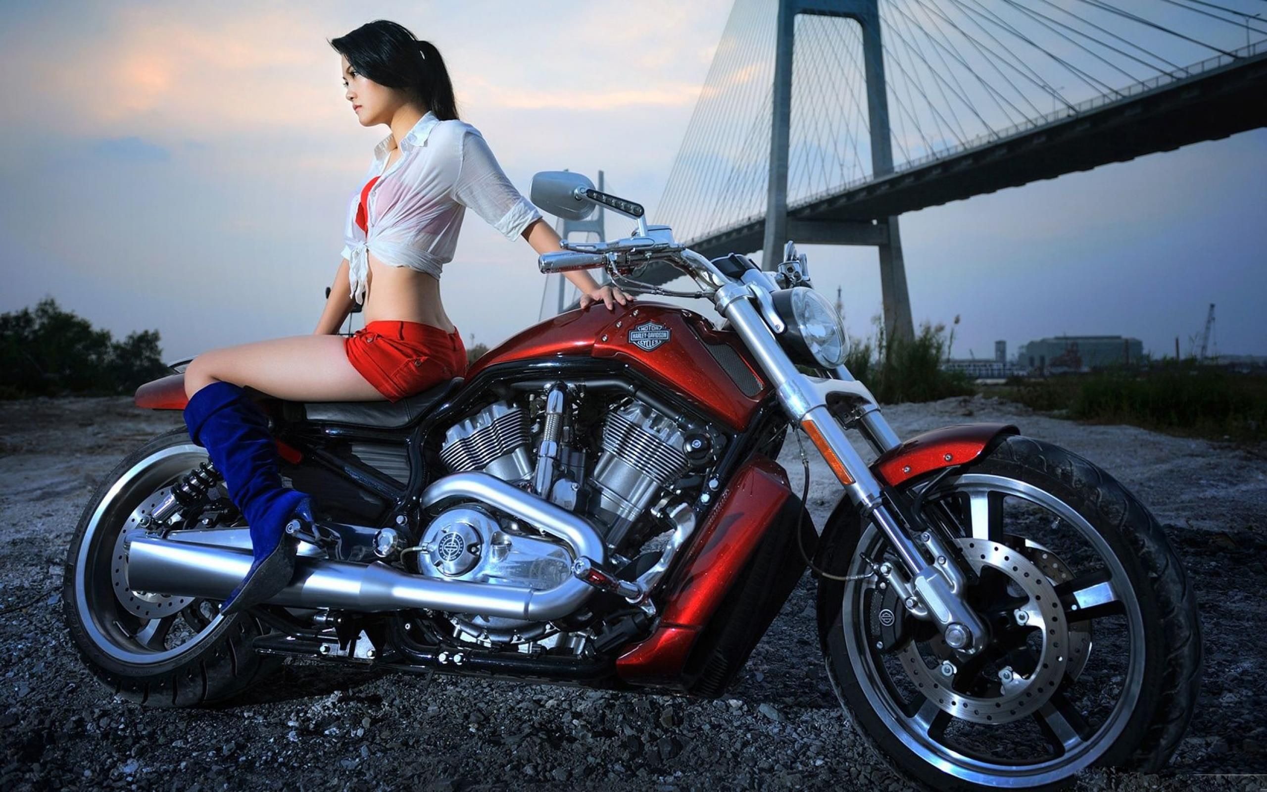 Hottest harley girls download wallpapers sexy girls music hottest harley girls download wallpapers sexy girls music harley davidson motorcycles best sciox Image collections