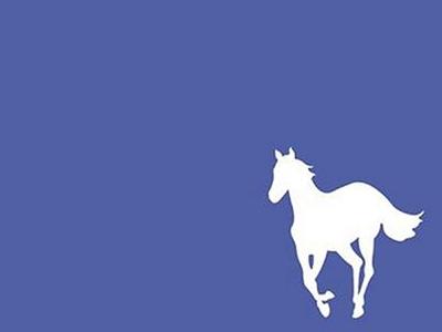 Deftones Horse Wallpaper Deftones White Pony Horse Background