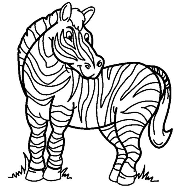 Beautiful Zebra Coloring Pages Free Printable Free Coloring Sheets Animal Coloring Pages Zebra Coloring Pages Coloring Pictures Of Animals