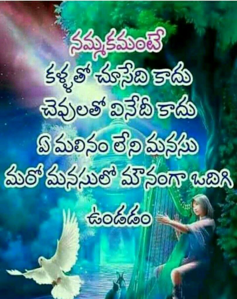Pin by sreevenireddy on Quotes