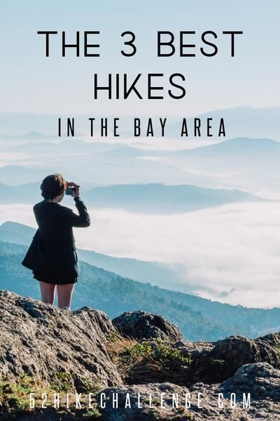 Photo of The BEST Hikes in The Bay Area