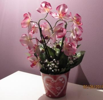 Valentine`s Day Phalaenopsis Orchid Silk Arrangement Flower Floral Basket Decor