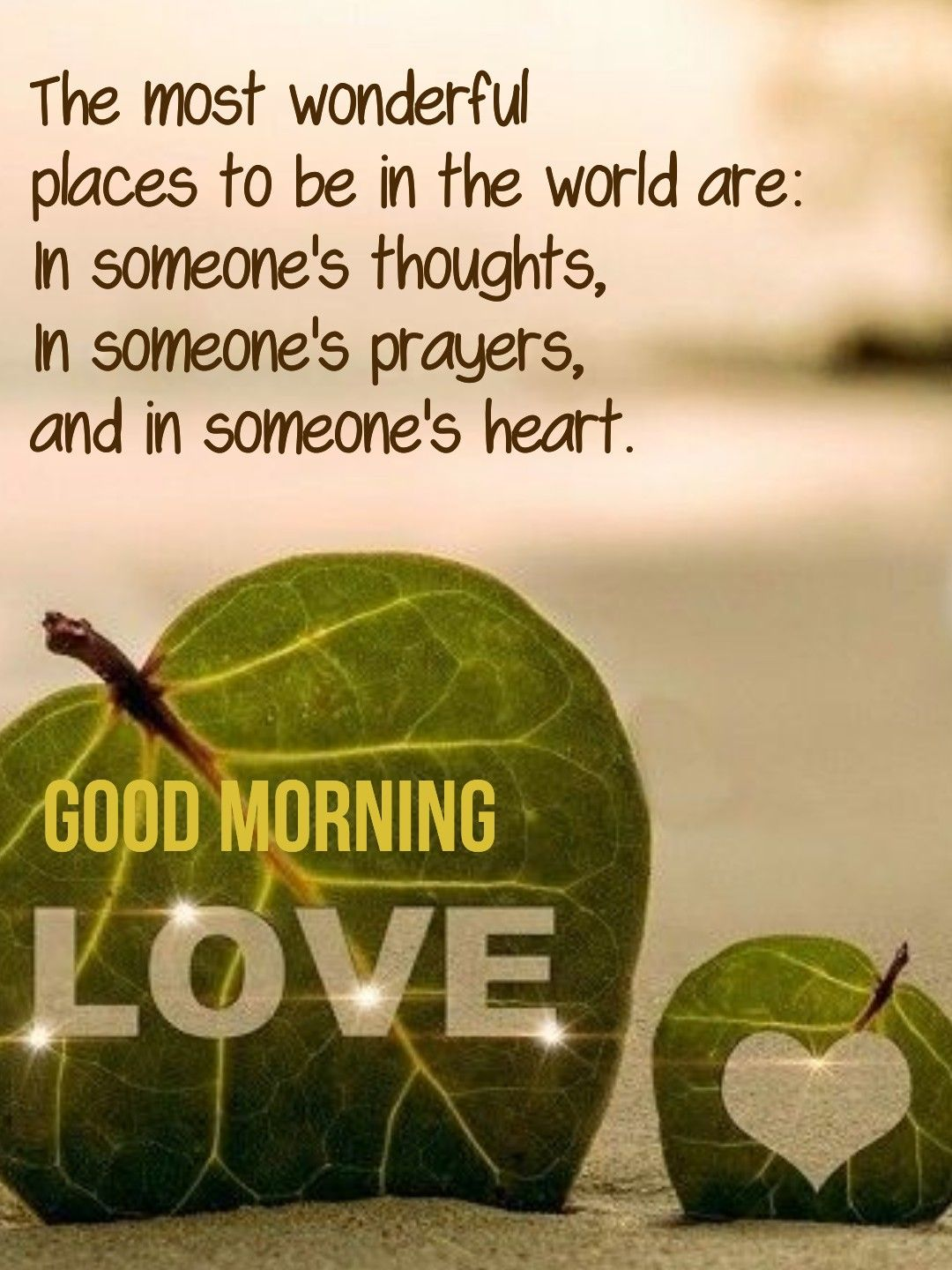 Pin By Pat Evins On Good Morning Morning Sweetheart Happy Morning Quotes Good Morning Quotes