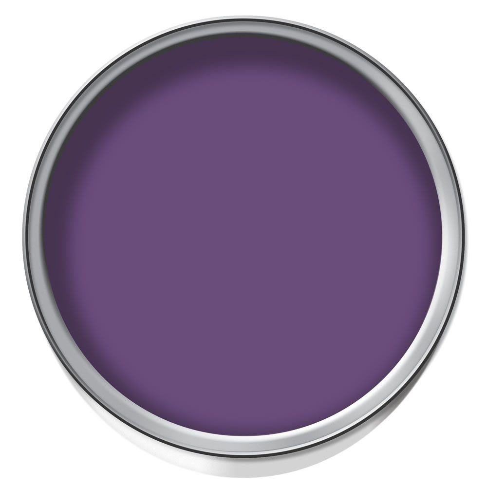 Wall stickers wilko - Wilko Colour Blast Matt Emulsion Paint Wizard 2 5l