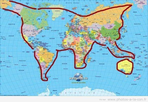 carte du monde chat image drole chat monde (avec images) | Humour, Chat, Message marrant