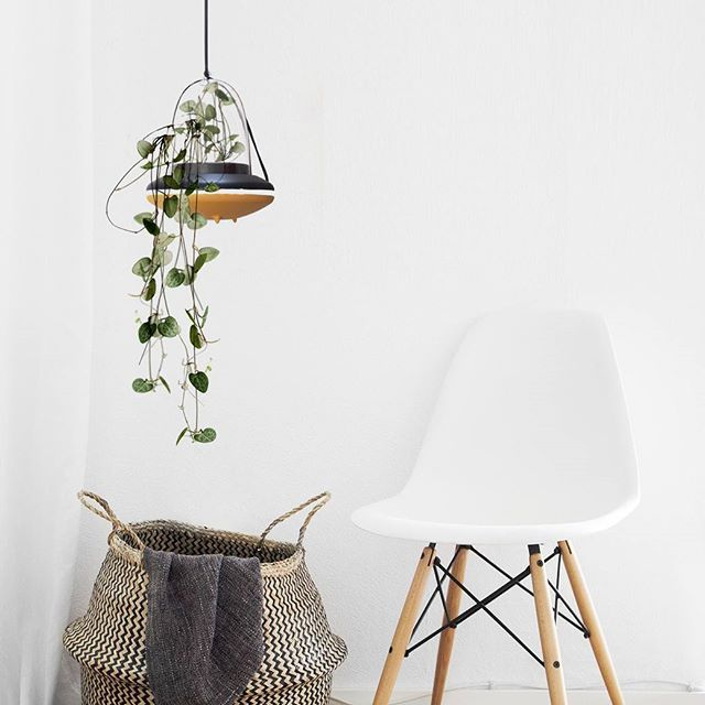 How To Turn A White Space Into A Lively Place #üfo