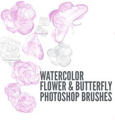 Watercolor Floral Photoshop Brushes Free Watercolor Flowers