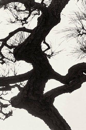 森崎健一 写真展  「紙は神なり」