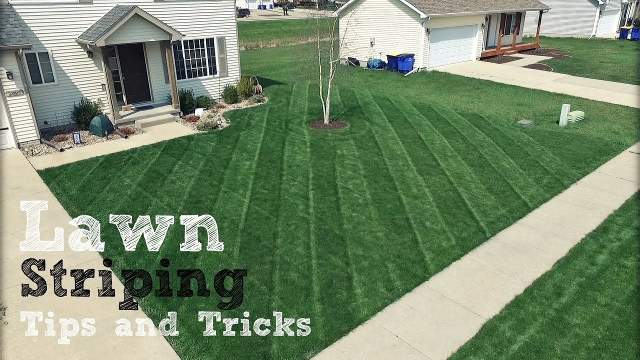 best lawn striper for push mower & riding mower: 2019