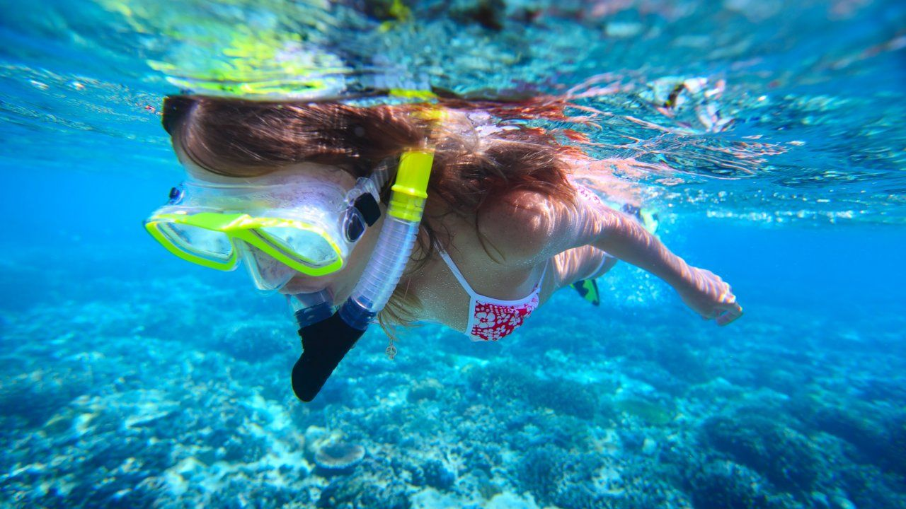 TOUR: Snorkeling at Sosua Bay - Chukka.com