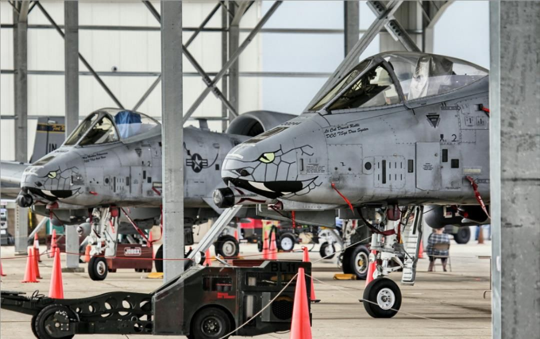 A10s from the 122nd Fighter Wing (Blacksnakes) A10
