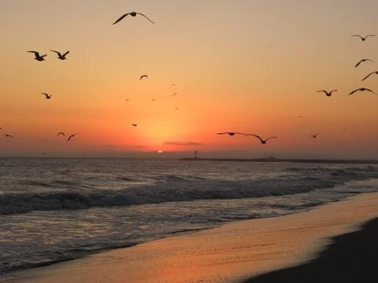 Port Hueneme Pictures Check Out Tripadvisor Members 561 Candid Photos And Videos Of Landmarks Hotels Attractions In
