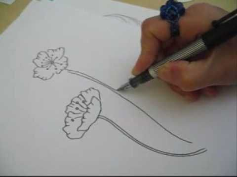 Poppy sketches bing videos watercolor poppies pinterest how to draw a poppy mightylinksfo