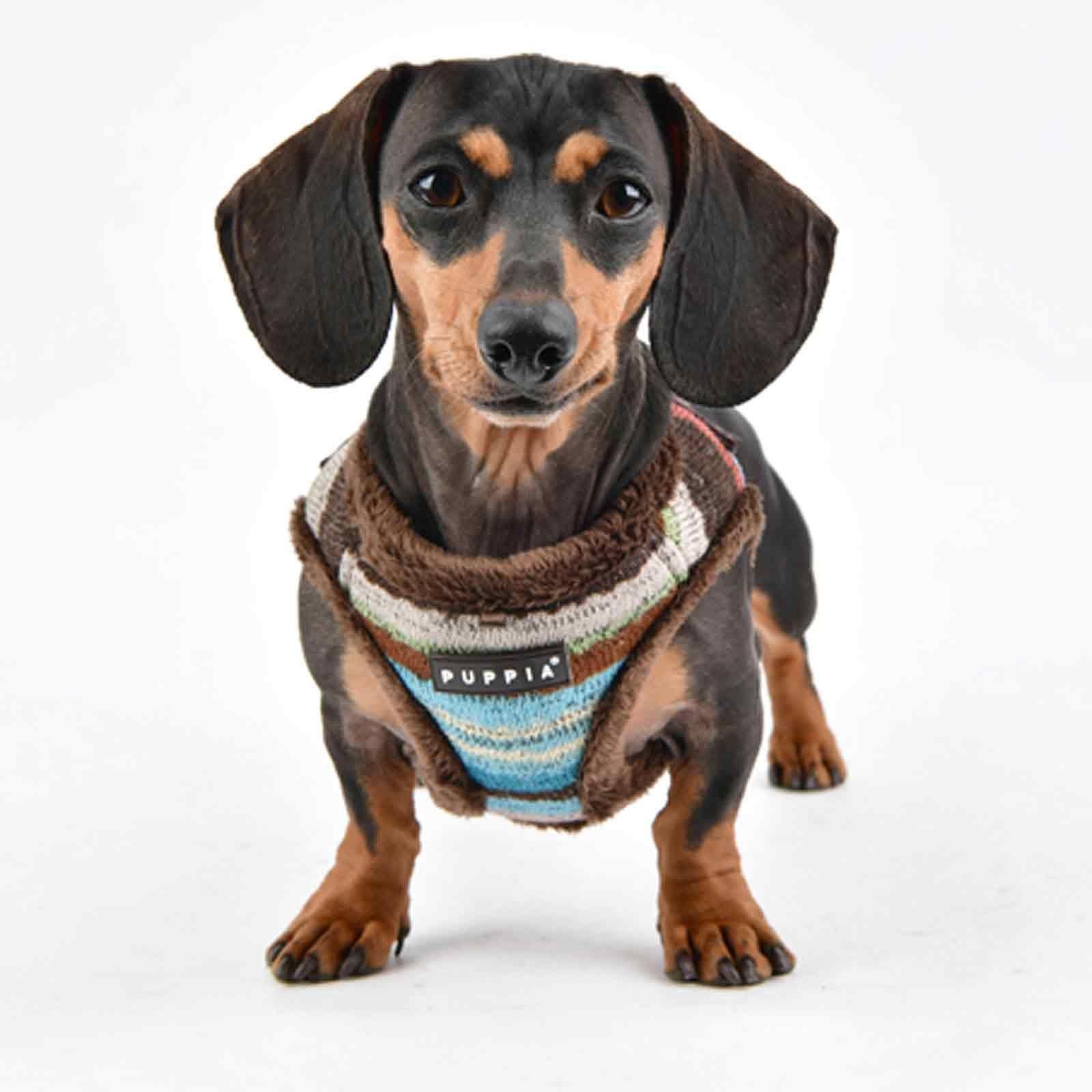 Puppia Crayon Dog Harness B Vest Brown Puppia Dog Harness Dog