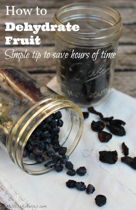 Früchte dehydrieren – Heidelbeeren, Kirschen, Trauben, Himbeeren & Brombeeren