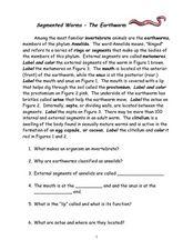 Segmented WormsThe Earthworm Worksheet Worksheets