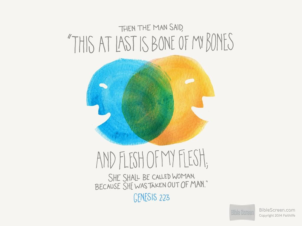 """In Genesis 2:22-24, God surgically removes a rib from the man's side and lovingly shapes the rib into a second human being who is """"like"""" the man. The man awakes and instantly recognizes the fulfillment of his deep longing in the eyes of the new """"other,"""" the woman. The imagery of being """"bone of my bones"""" and """"flesh of my flesh"""" speaks of a bond between the man and woman very strong. -Biblical: Kelly"""
