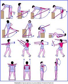 http://www.ejerciciosconpesas.es/wp-content/uploads/2010/10/ejercicios-para-las-piernas-.gif