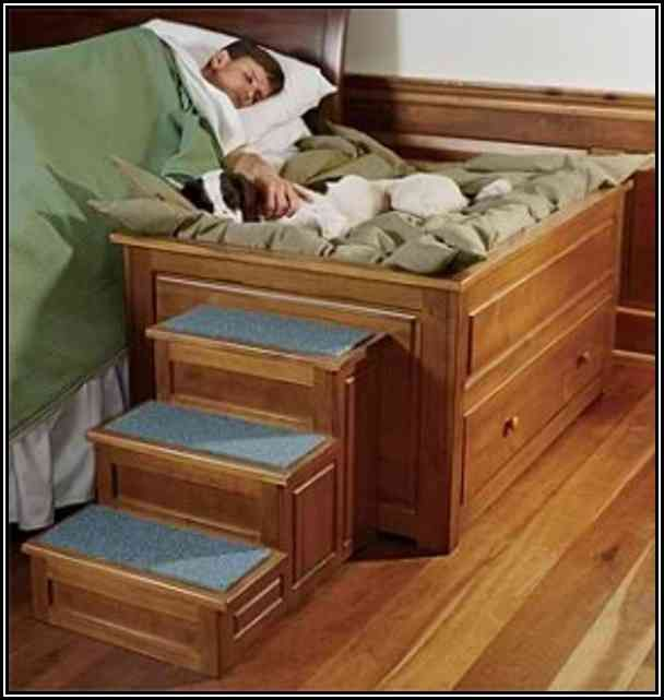 A Bed With A Built In Dog Bedsid Bunk Bed Plans With Stairs For