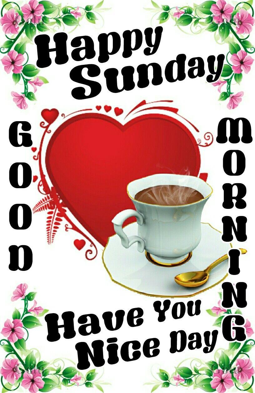 Good Morning Happy Sunday Quotes Good Morning Happy Sunday Sunday Quotes Funny