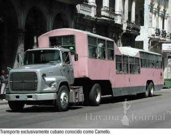 Camello Transportation In Cuba Cuba Photos Havana Journal Cuba Cuba Photos Transportation