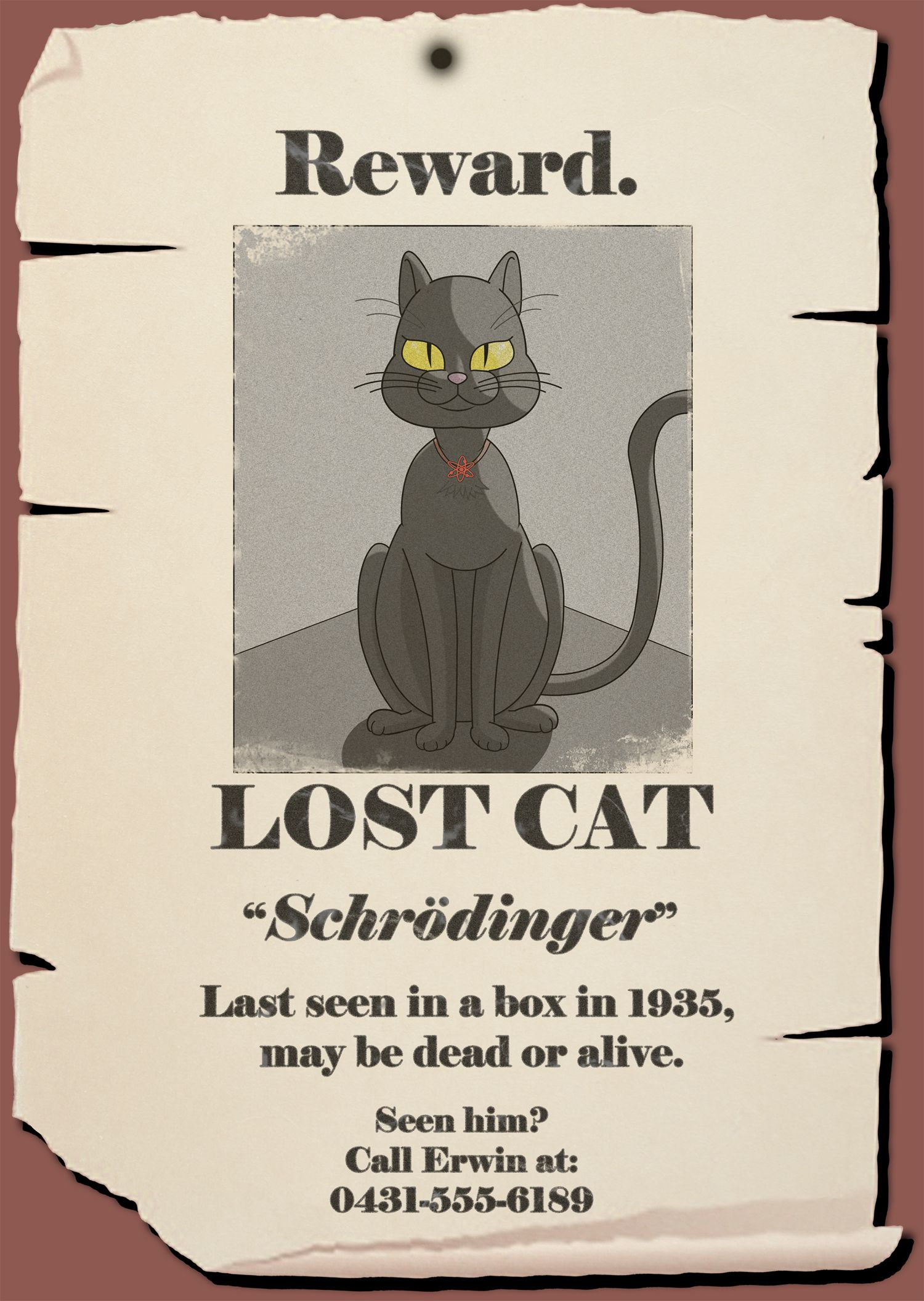 Schrödinger's cat | Science | Pinterest