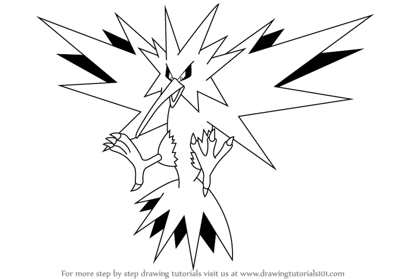 Learn How To Draw Zapdos From Pokemon Pokemon Step By Step Zapdos Drawings Pokemon