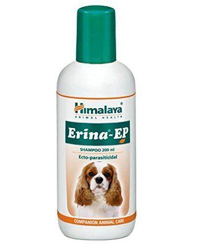 Pin on Pet Supplies India
