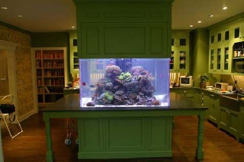 The Ocean Kitchen: A Giant Aquarium Kitchen Island - YouTube