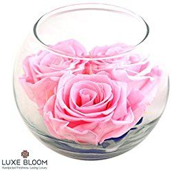 """Luxe Bloom   Ballet Pink Preserved Roses last 60 days   Perfect for Valentine's Gifts. Share the long lasting love by Luxe Bloom   3 pink roses & greens in a 4"""" glass bubble"""