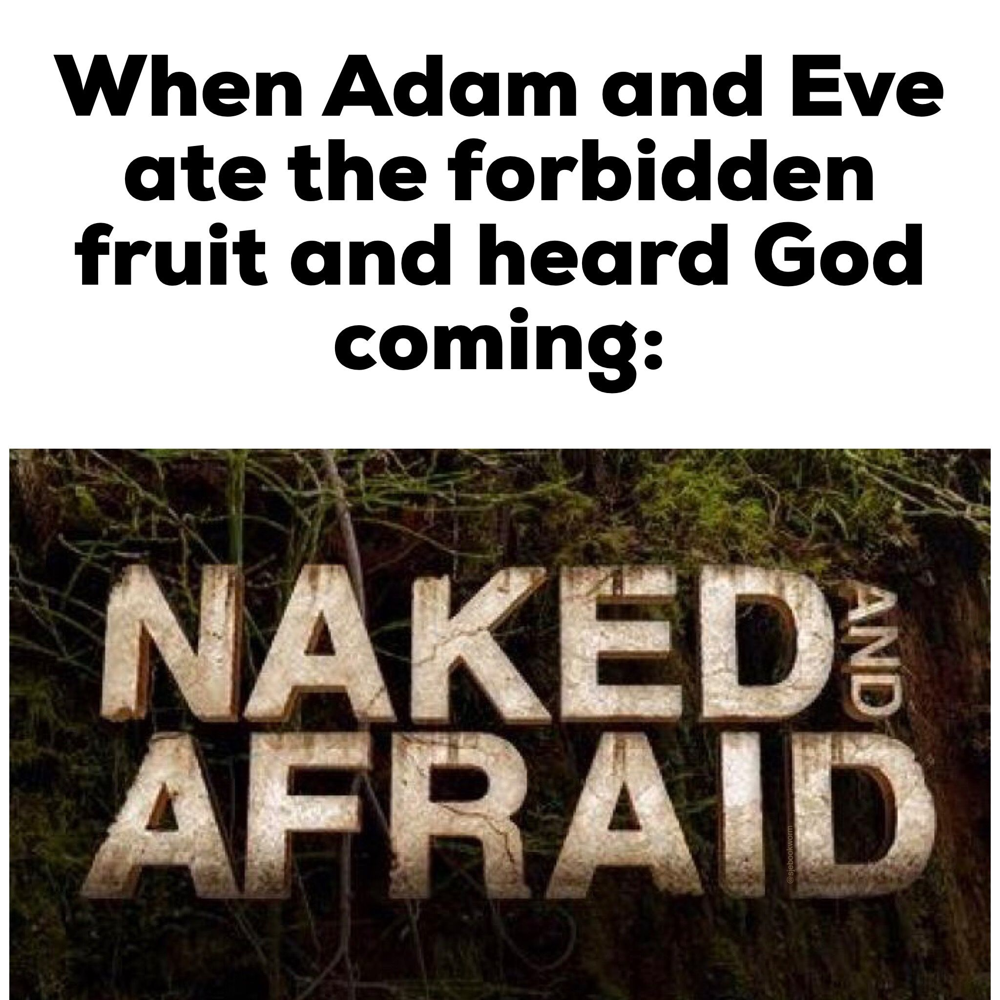 Adam And Eve Blinking Meme