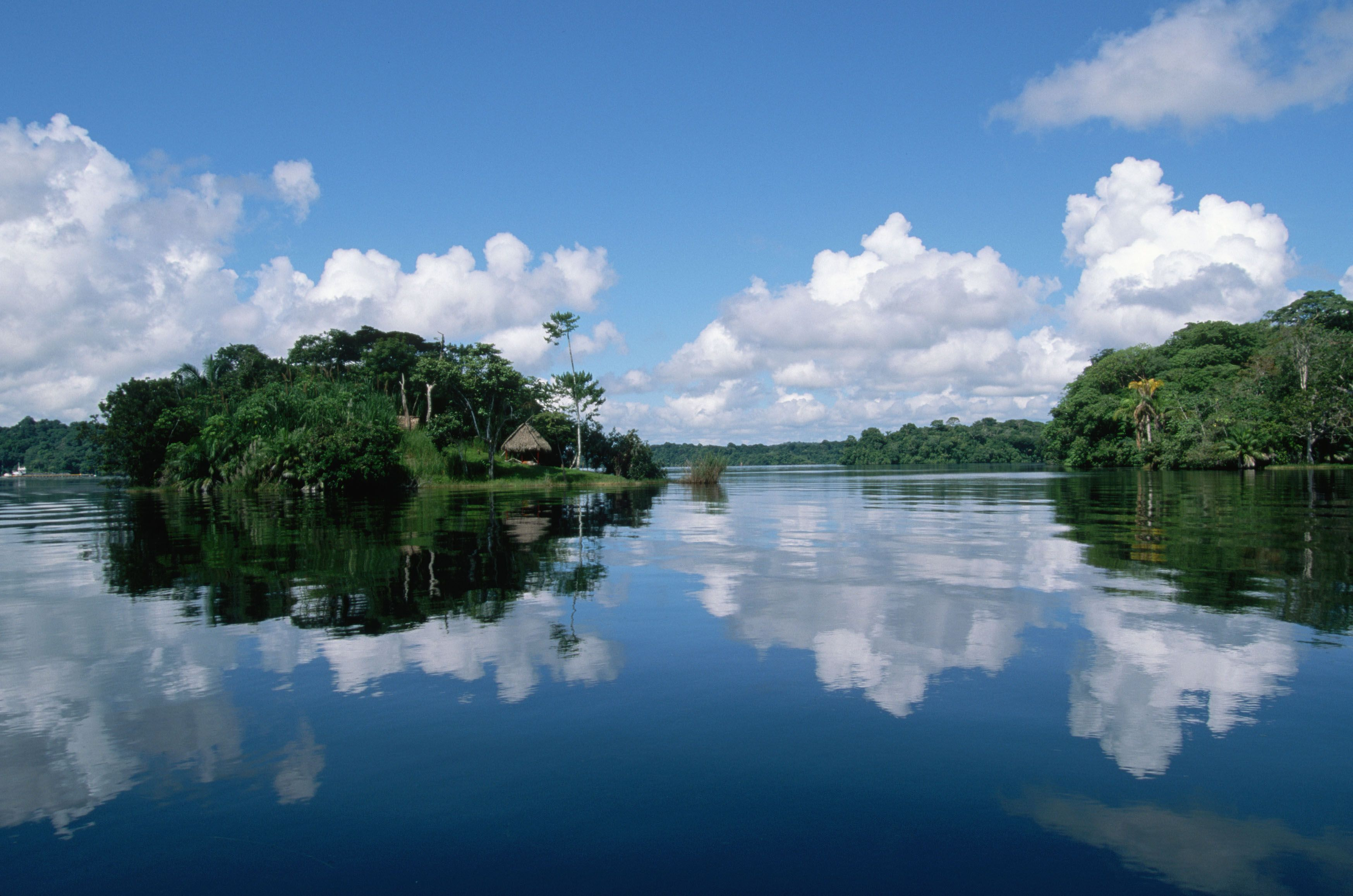 Photos of amazon river amazon river hd wallpapers for Amazon wallpaper