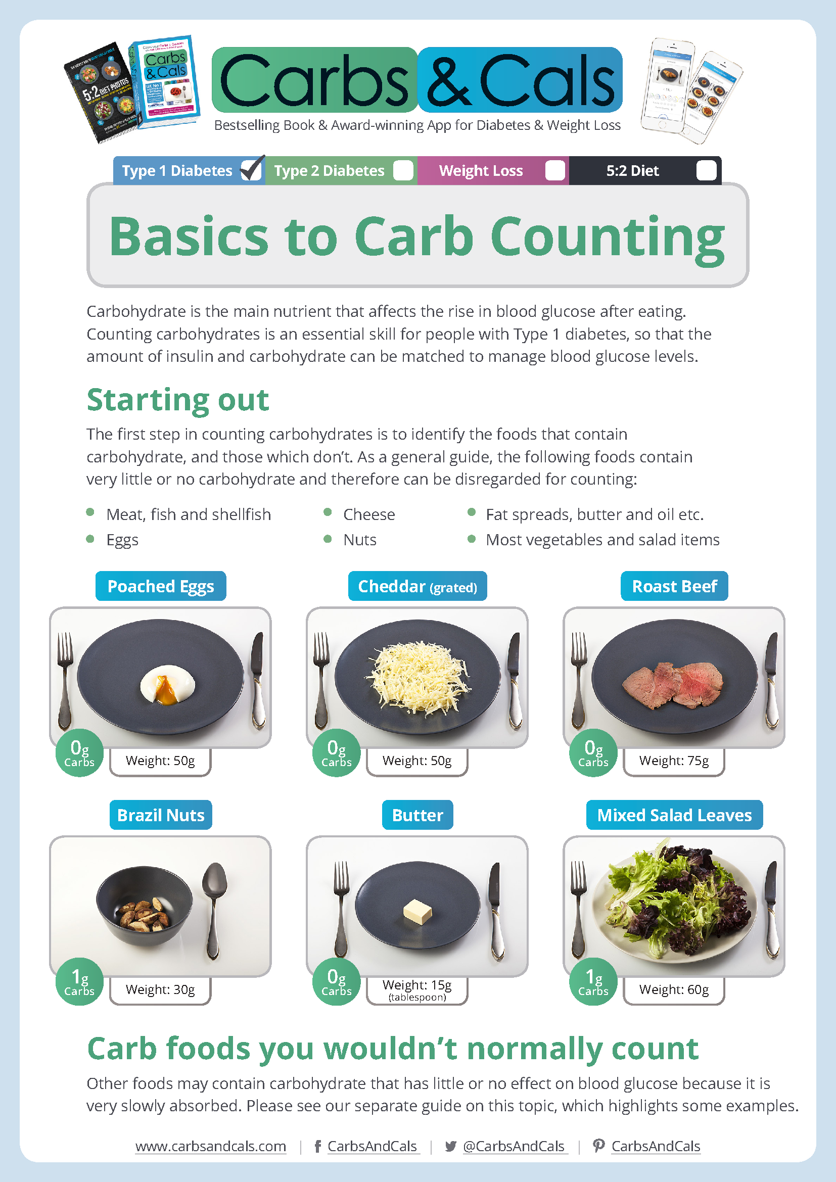 Basics To Carbs Counting For Type 1 Diabetes Page 1 To